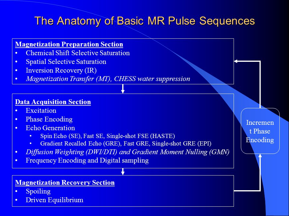 The Anatomy of Basic MR Pulse Sequences