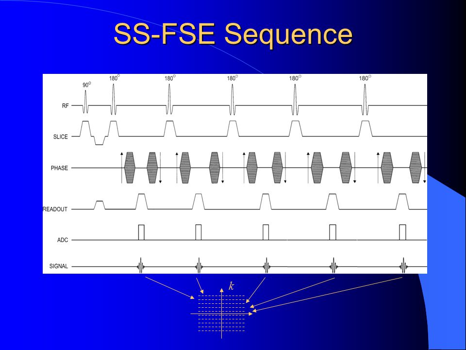 SS-FSE Sequence k