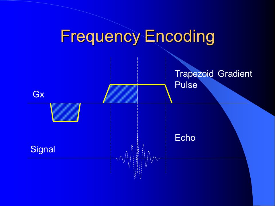 Frequency Encoding Trapezoid Gradient Pulse Gx Echo Signal