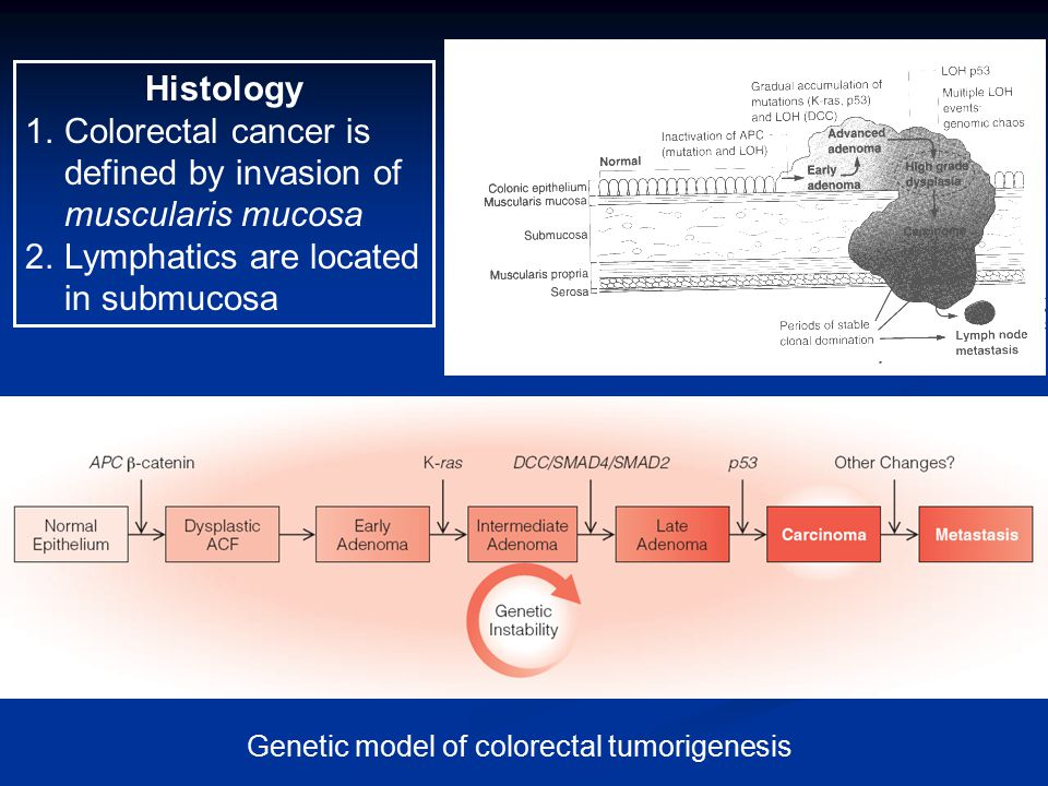 Colorectal cancer is defined by invasion of muscularis mucosa