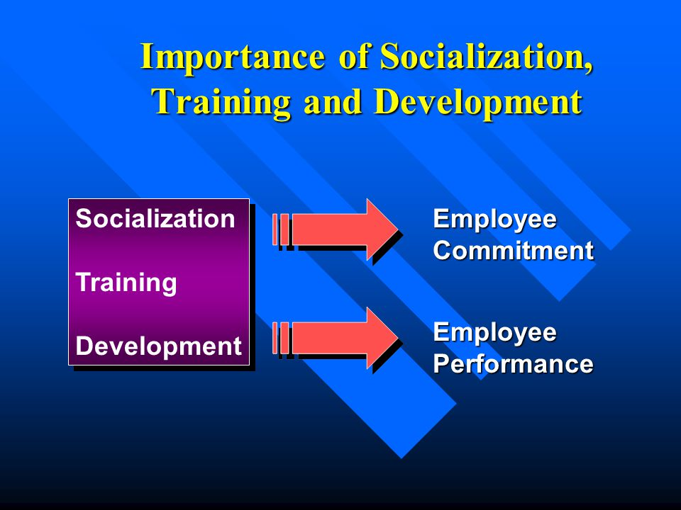 Importance of Socialization, Training and Development