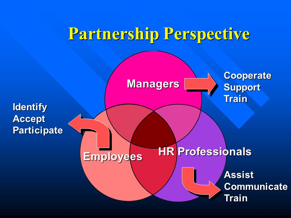 Partnership Perspective