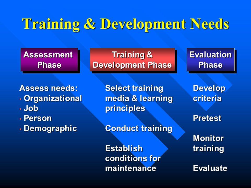 Training & Development Needs