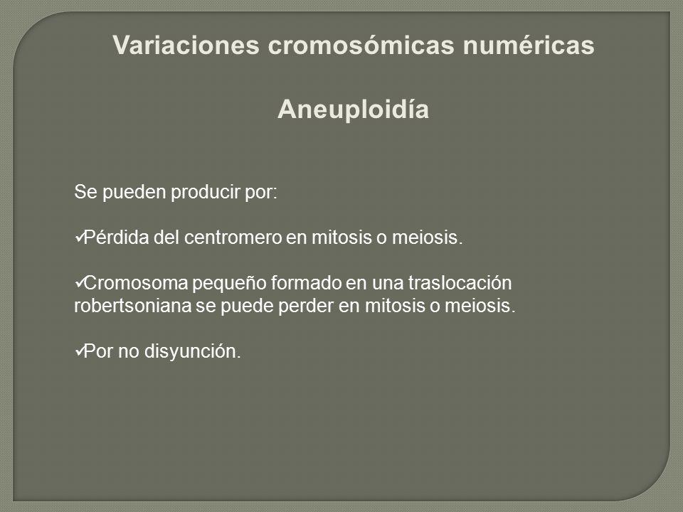 Variaciones cromosómicas numéricas