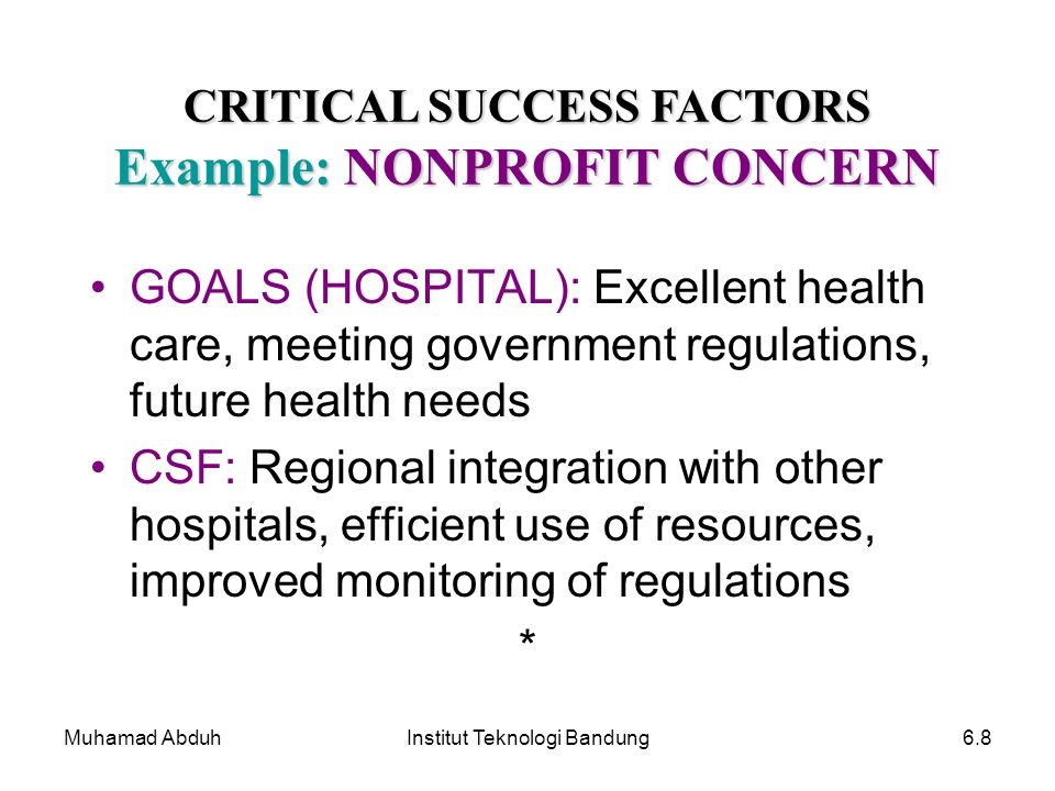 CRITICAL SUCCESS FACTORS Example: NONPROFIT CONCERN