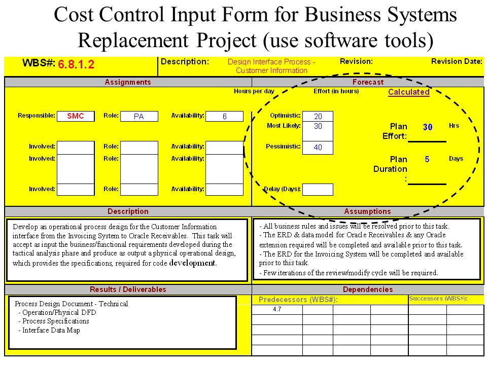 Cost Control Input Form for Business Systems Replacement Project (use software tools)