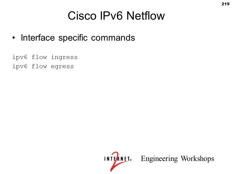 Cisco IPv6 Netflow Interface specific commands ipv6 flow ingress