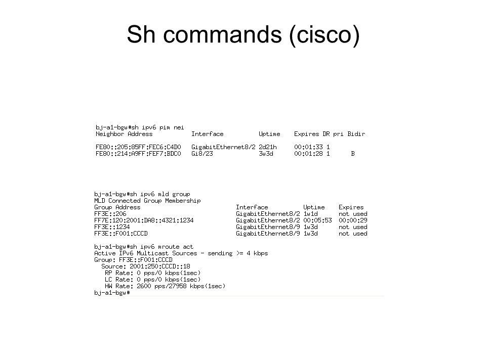 Sh commands (cisco)
