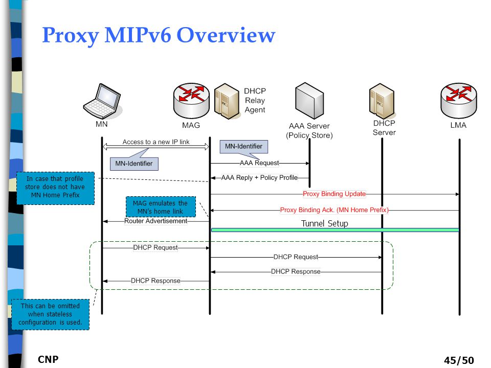 Proxy MIPv6 Overview CNP Tunnel Setup