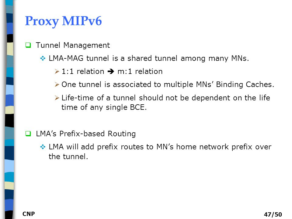 Proxy MIPv6 Tunnel Management