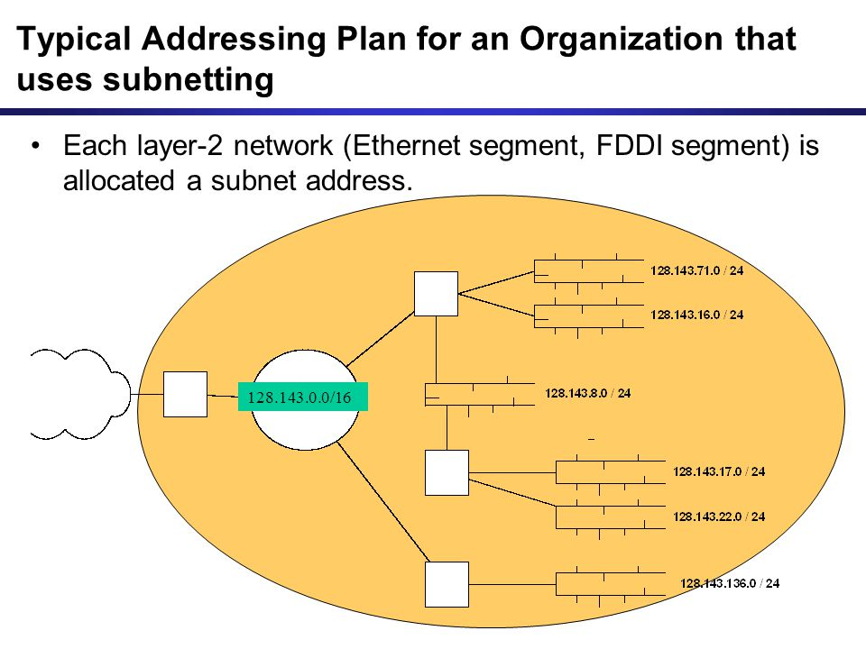 Typical Addressing Plan for an Organization that uses subnetting