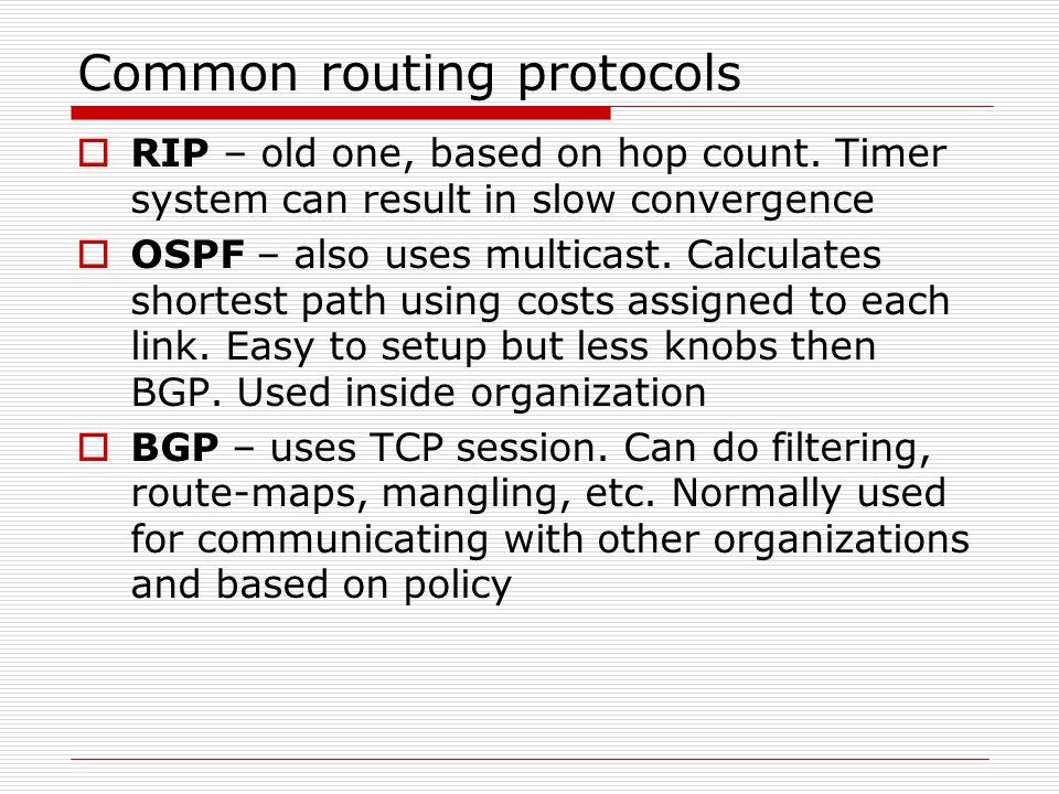 Common routing protocols