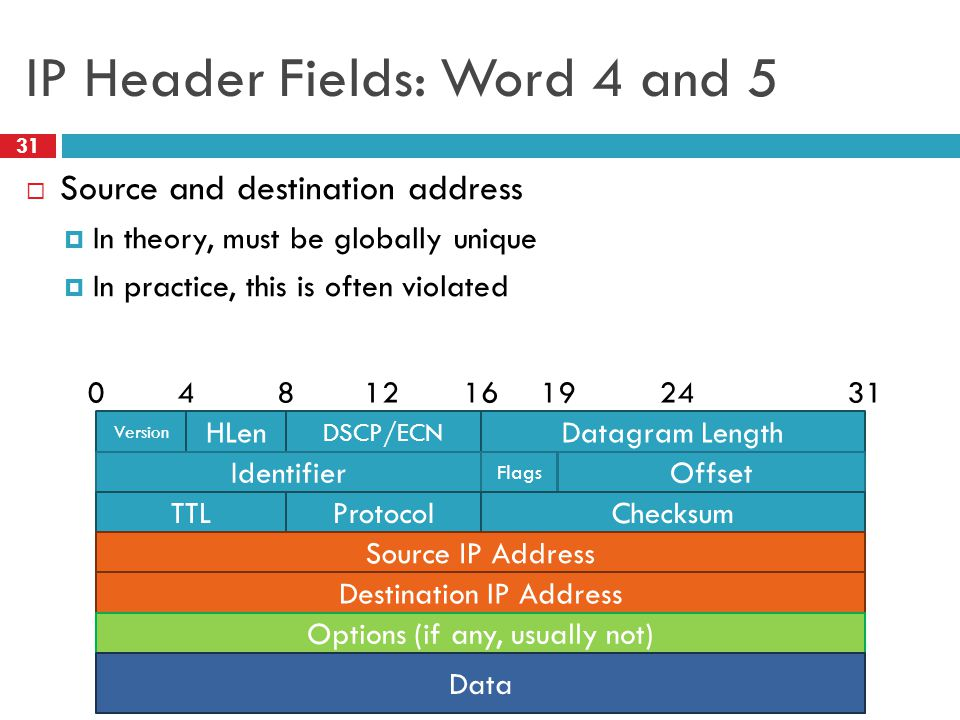 IP Header Fields: Word 4 and 5