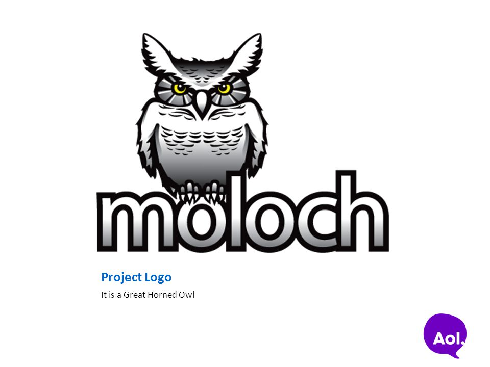 Project Logo It is a Great Horned Owl