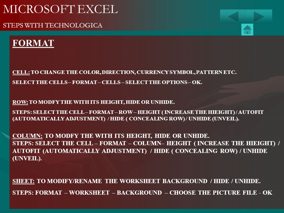 MICROSOFT EXCEL FORMAT STEPS WITH TECHNOLOGICA