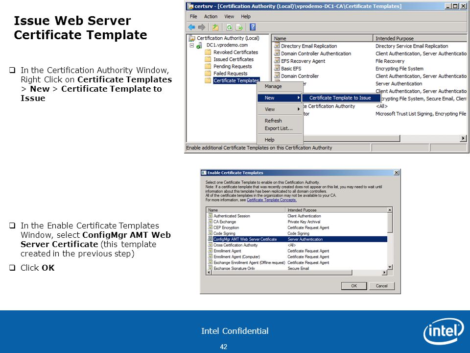 Issue Web Server Certificate Template