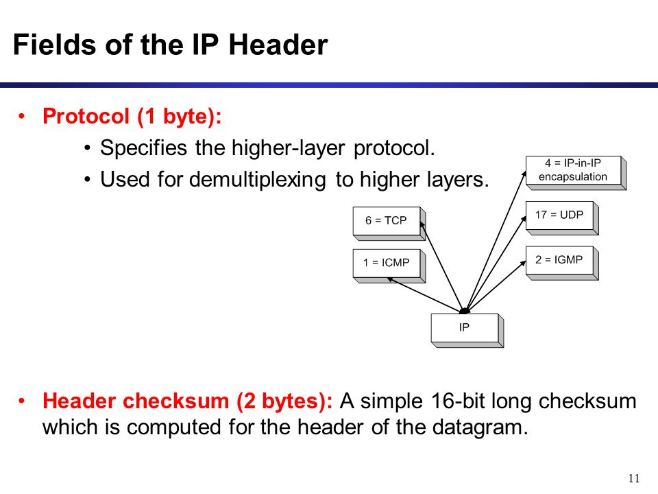Fields of the IP Header Protocol (1 byte):