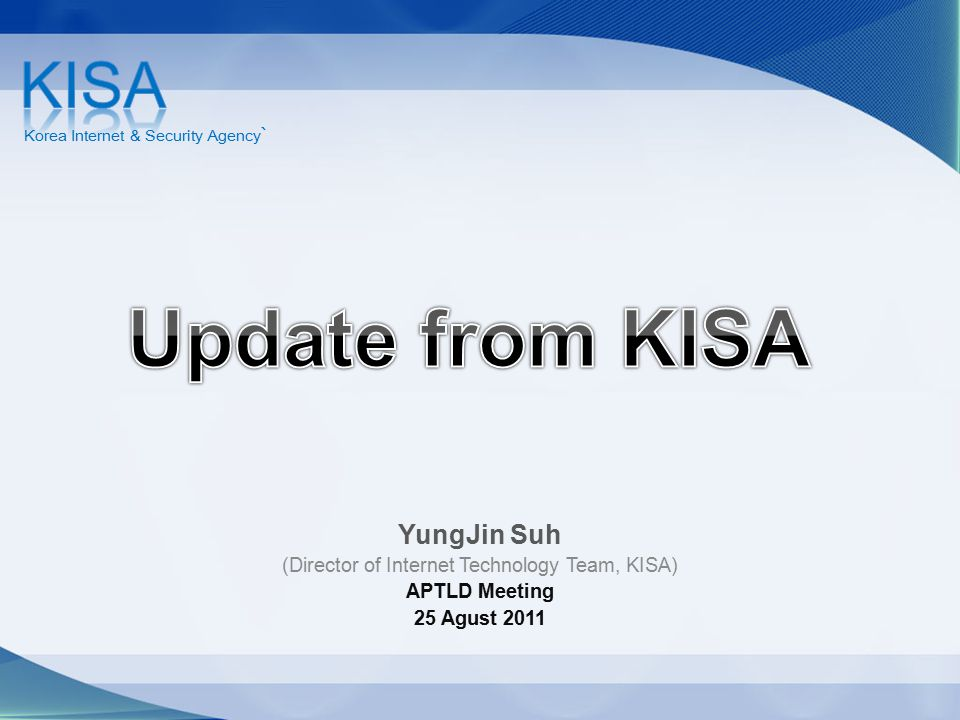 (Director of Internet Technology Team, KISA)