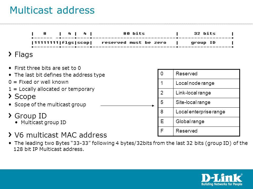 Multicast address Flags Scope Group ID V6 multicast MAC address