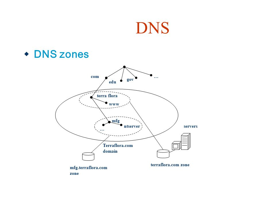 DNS DNS zones terra flora www com edu gov … mfg ntserver