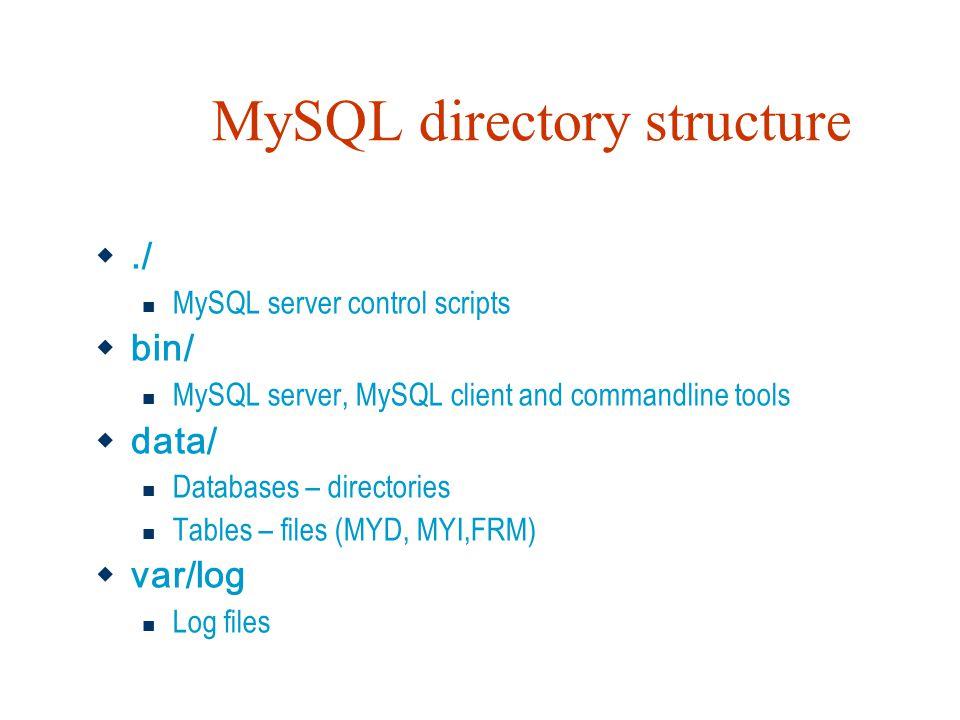 MySQL directory structure