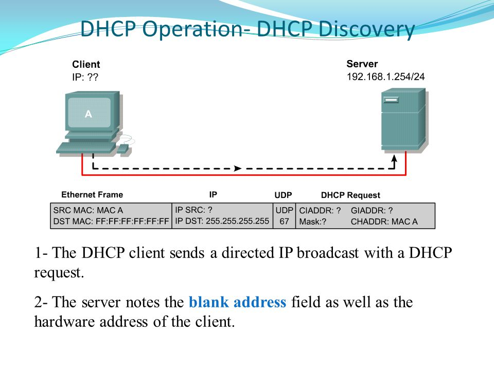 DHCP Operation- DHCP Discovery