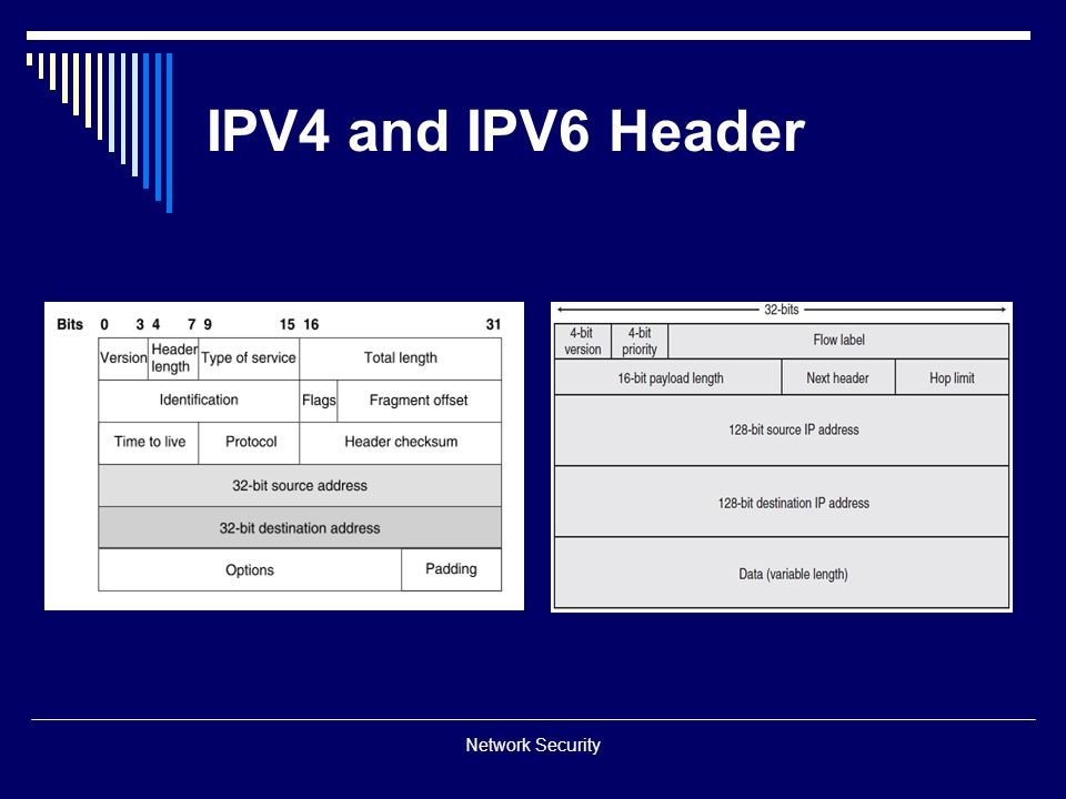 IPV4 and IPV6 Header Network Security