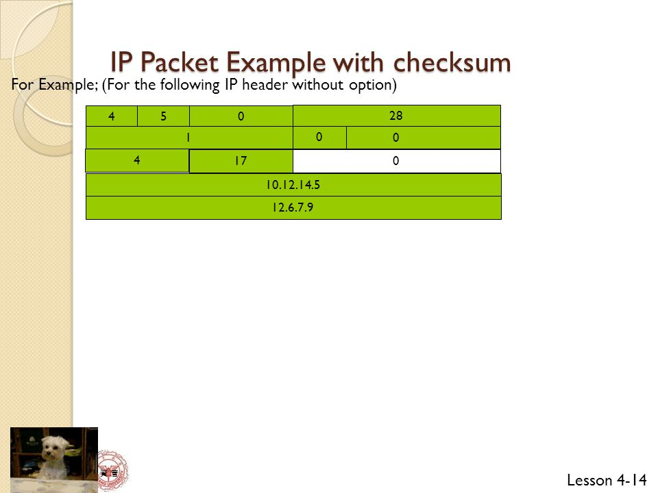 IP Packet Example with checksum