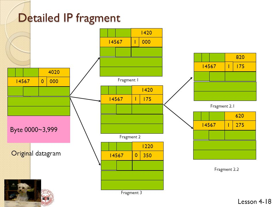 Detailed IP fragment Byte 0000~3,999 Original datagram 14567 1420 000