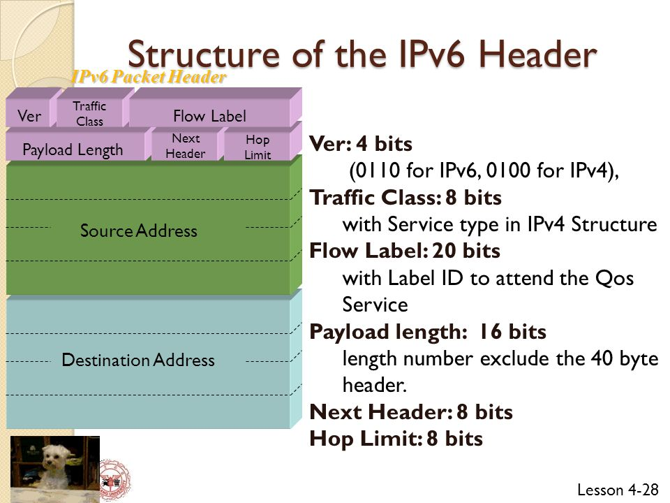 Structure of the IPv6 Header