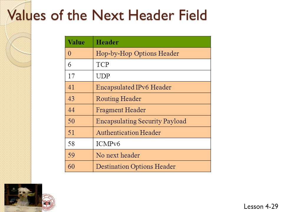 Values of the Next Header Field