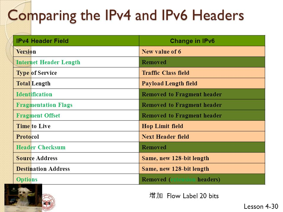 Comparing the IPv4 and IPv6 Headers