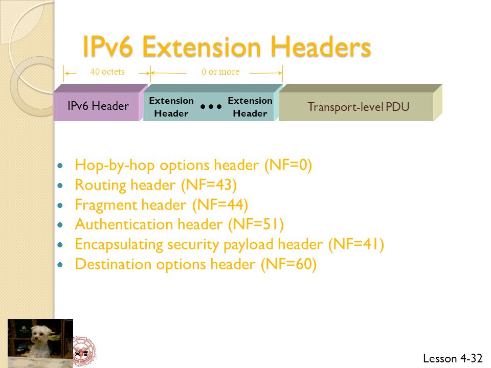IPv6 Extension Headers Hop-by-hop options header (NF=0)