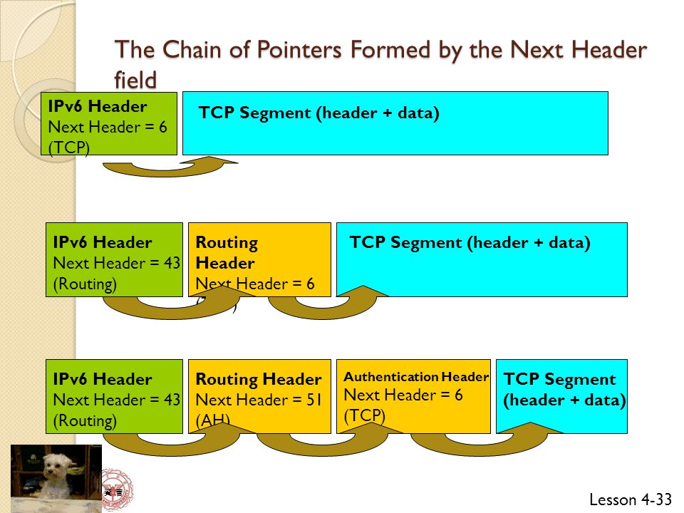 The Chain of Pointers Formed by the Next Header field