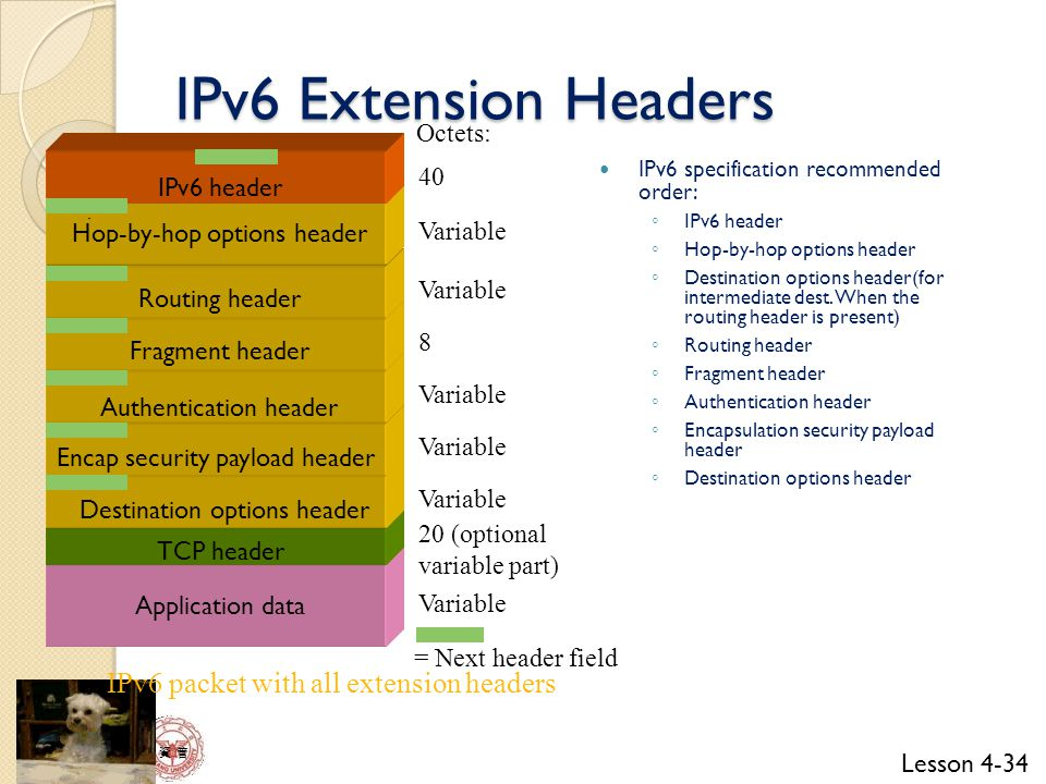 IPv6 Extension Headers IPv6 packet with all extension headers Octets:
