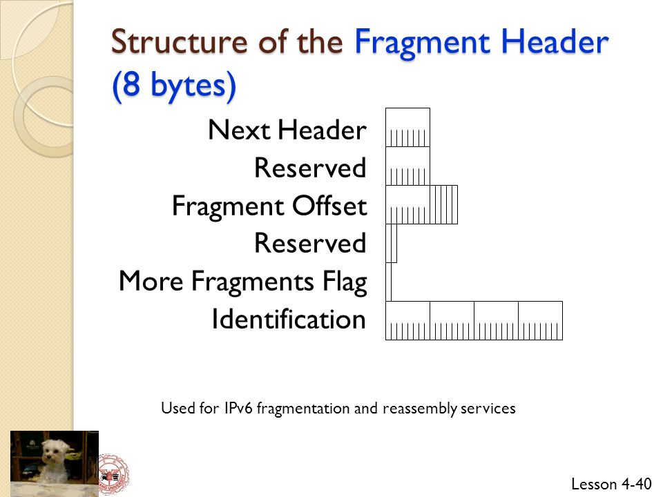 Structure of the Fragment Header (8 bytes)