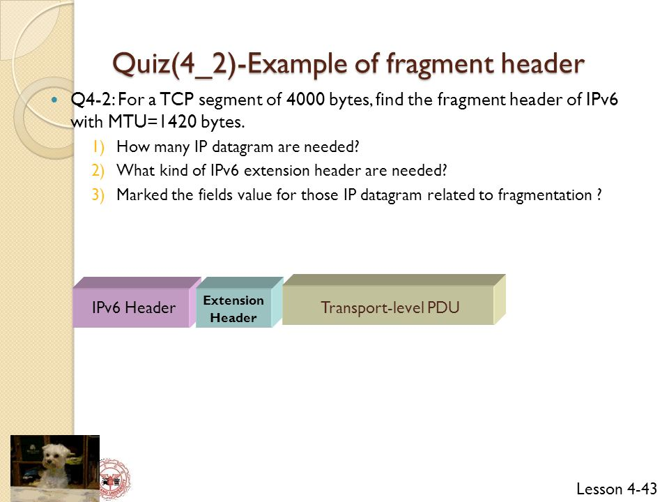 Quiz(4_2)-Example of fragment header