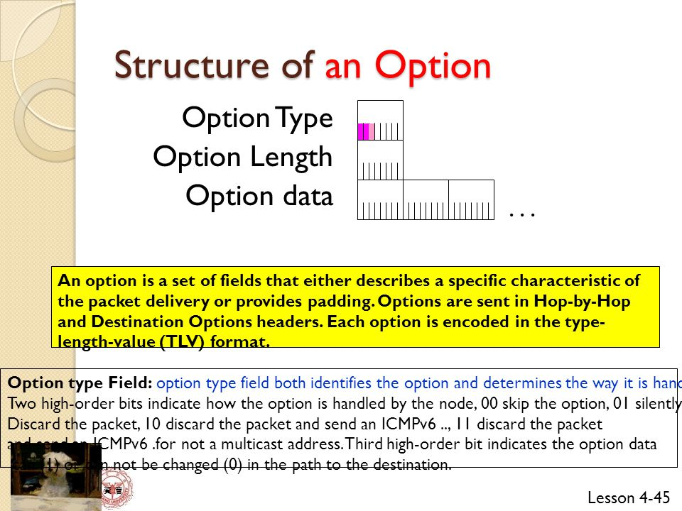 Structure of an Option Option Type Option Length Option data . . .