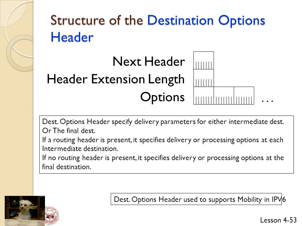 Structure of the Destination Options Header