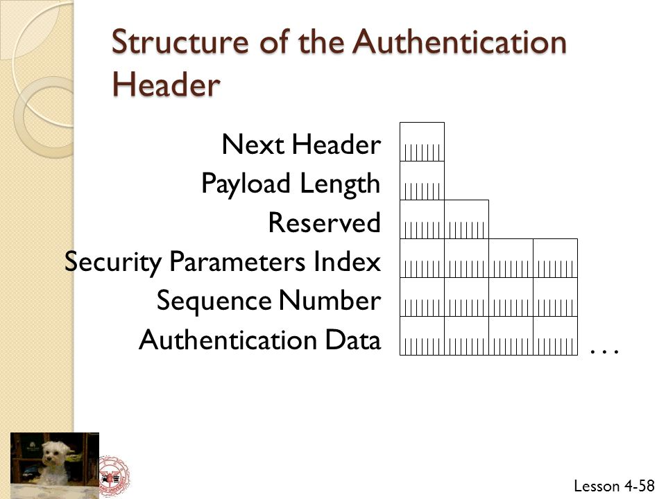 Structure of the Authentication Header