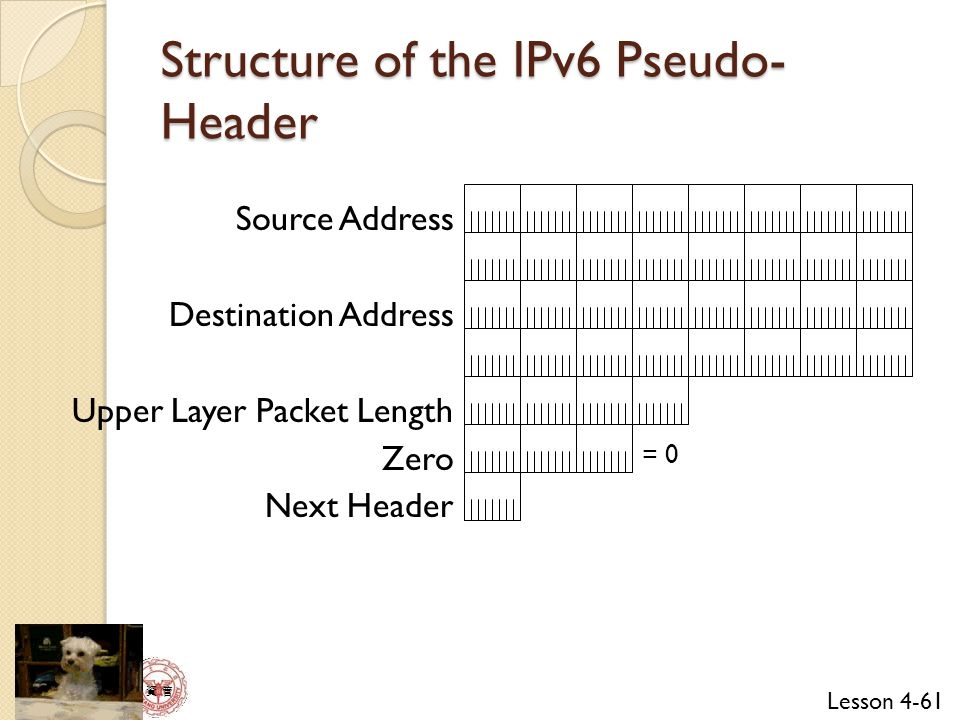 Structure of the IPv6 Pseudo-Header