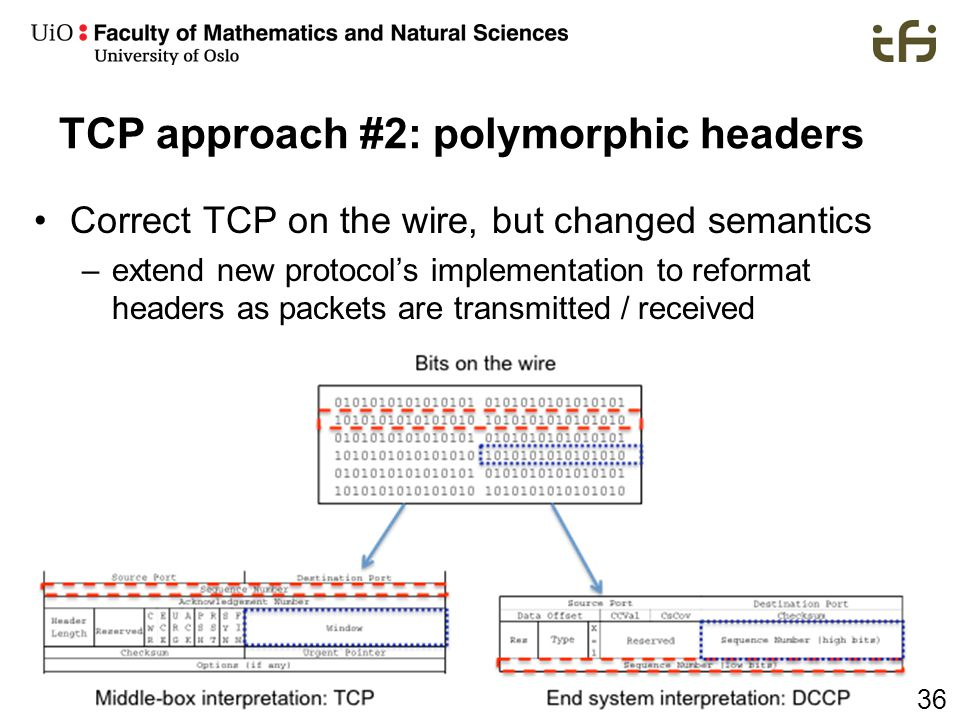 TCP approach #2: polymorphic headers