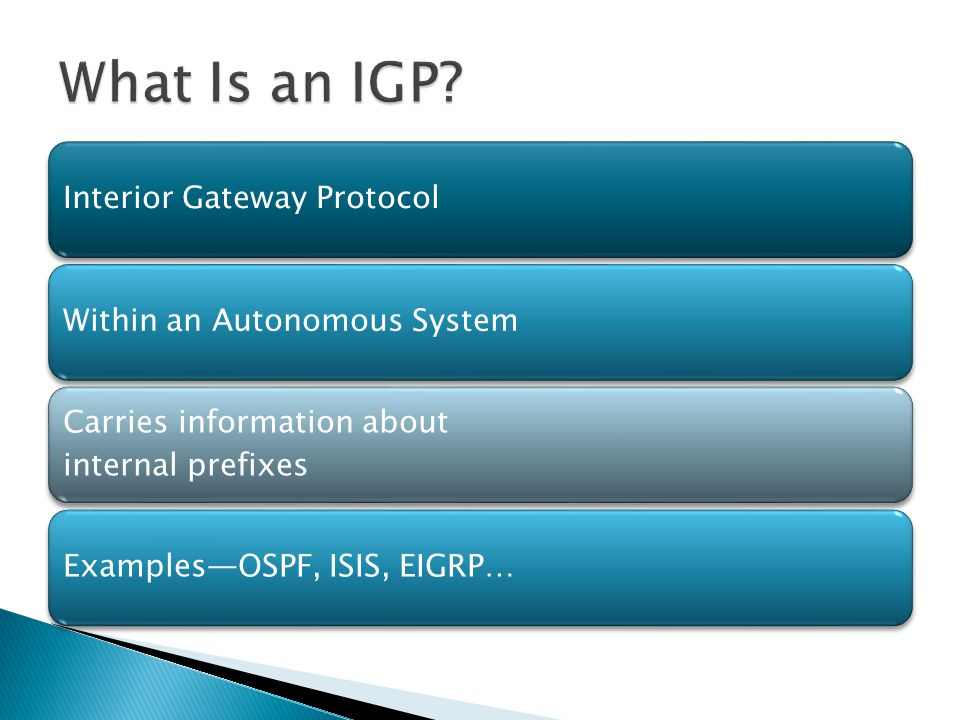 What Is an IGP 5 Interior Gateway Protocol