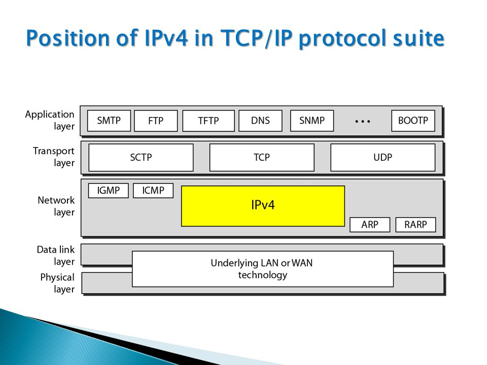 Position of IPv4 in TCP/IP protocol suite