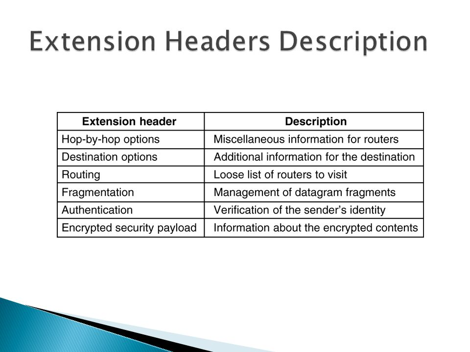 Extension Headers Description