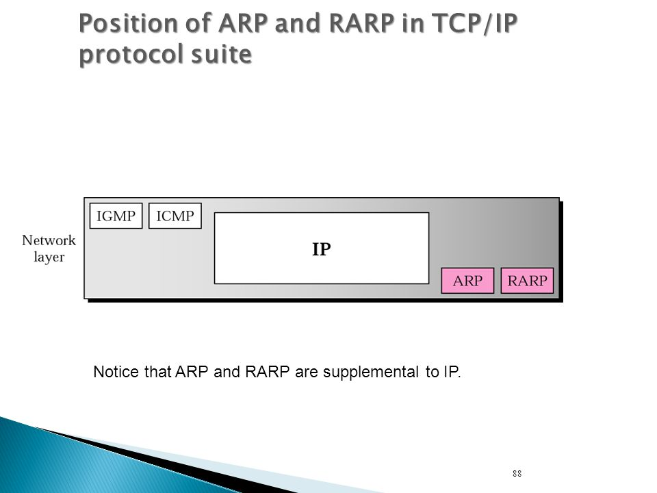Position of ARP and RARP in TCP/IP protocol suite