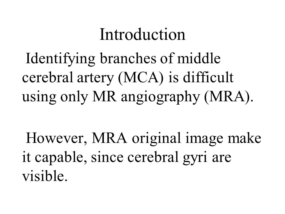 Introduction Identifying branches of middle cerebral artery (MCA) is difficult using only MR angiography (MRA).