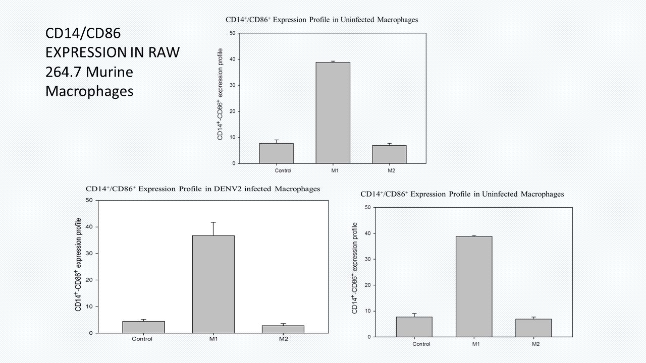 CD14/CD86 EXPRESSION IN RAW 264.7 Murine Macrophages