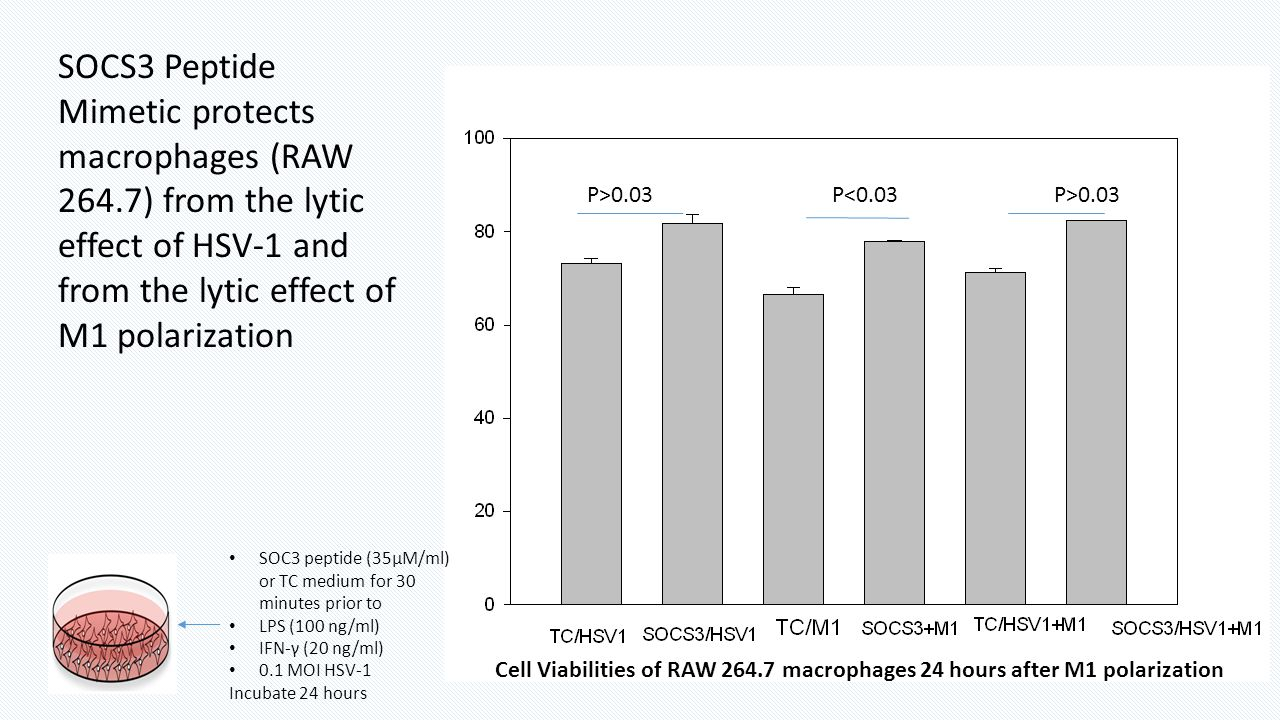 SOCS3 Peptide Mimetic protects macrophages (RAW 264