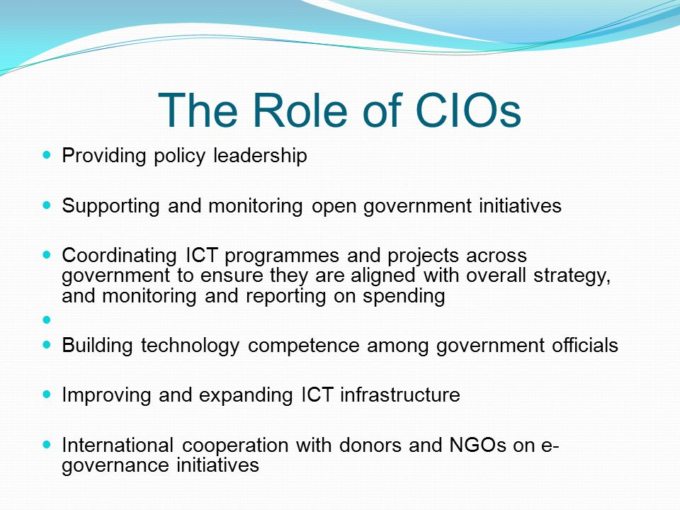 The Role of CIOs Providing policy leadership